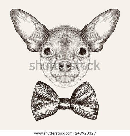 Sketch Toy Terrier with bow tie. Hand drawn dog illustration. - stock vector