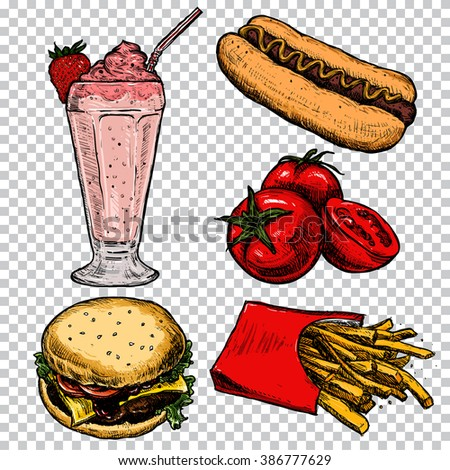 Sketch vector illustration. Hamburger, milkshake, tomatoes and hot dog. Set of colorful fast food, isolated on background for poster, menu, web, banner, info graphic. Vector illustration.
