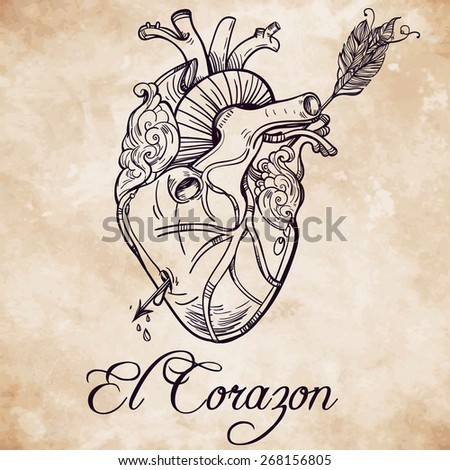 Sketched hand drawn line art beautiful human heart with arrow. El Corazon. Vintage style. Beautiful tattoo template.Isolated vector illustration. Tattoo artist design element. Aged card background.  - stock vector