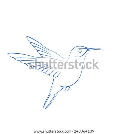 Sketched hummingbird colibri. Design template for label, banner, postcard, logo. Vector. - stock vector