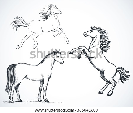 Sketched side views of horses with space for text - stock vector