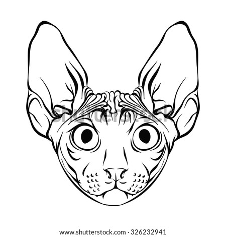 ugliest pet shop coloring pages | Hairless Cat Stock Vectors, Images & Vector Art | Shutterstock