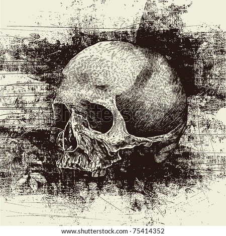 skull and grunge vector background - stock vector