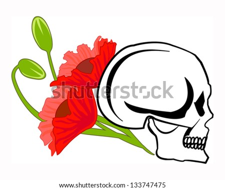 Skull and poppies. EPS 10 - stock vector
