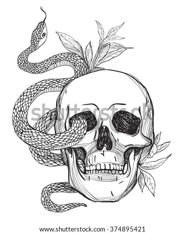 Skull and Snake. Tattoo art, coloring books. Hand drawn vintage vector illustration Isolated on white background. - stock vector
