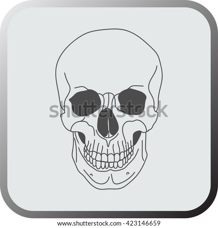 Skull flat icon, logo, button isolated on a grey background. Vector.