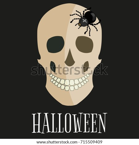 Skull illustration head dead bone art death human skeleton vector