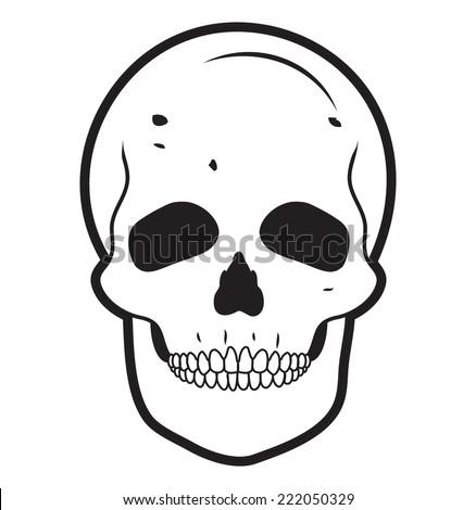 SKULL illustration vector - stock vector