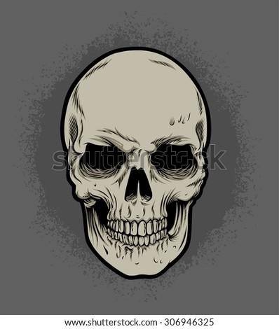 skull isolated - stock vector