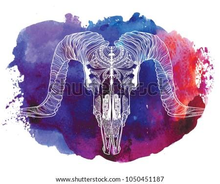 Skull Of A Ram Meditation Coloring The Mandala Ethnic Drawing Manually