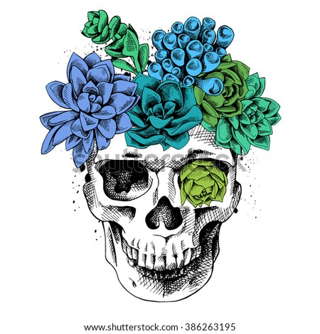 Skull with a bright color succulent plants. Vector illustration. - stock vector