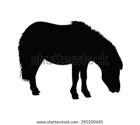 Mare And Foal Stock Images, Royalty-Free Images & Vectors ...
