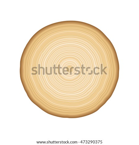 Smooth tan and brown radial tree rings in a  pattern showing growth and layers as a background isolated on white