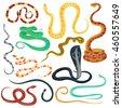 snake character wildlife nature ...