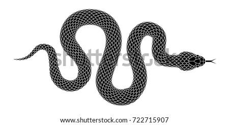 serpent design