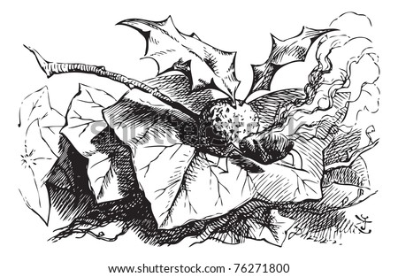 Snap-dragon fly - Through the Looking Glass original book engraving. You find a snap-dragon-fly. Its body is made of plum-pudding, its wings of holly-leaves, and its head is a raisin burning in brandy - stock vector