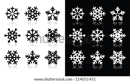 Snowflakes icons with shadow on black and white background - stock vector