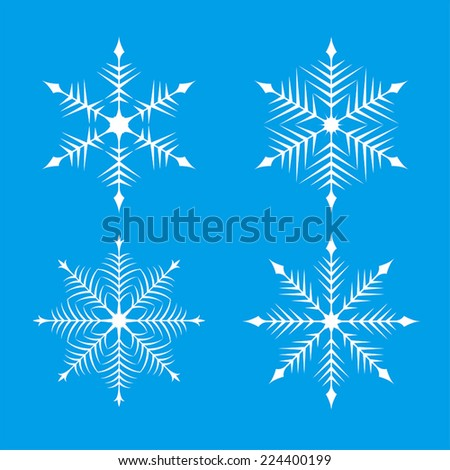 Snowflakes / vector illustration