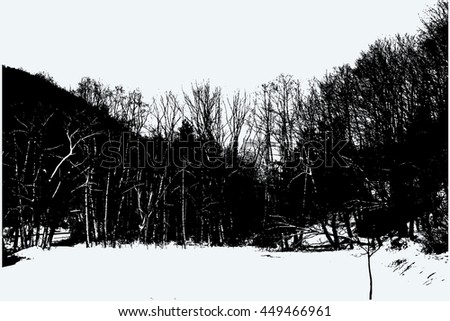 Snowy forest vector background. - stock vector