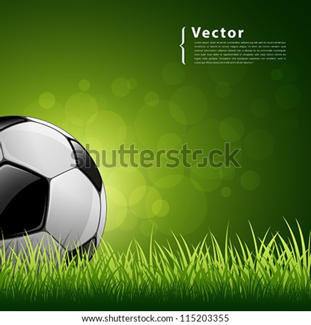 Soccer ball on green grass background, vector illustration