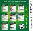 soccer championship 2014 - stock photo
