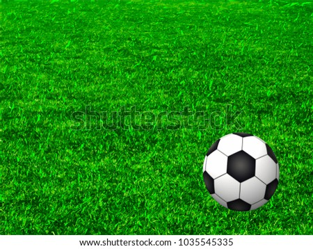 Soccer field isolated,vector illustration