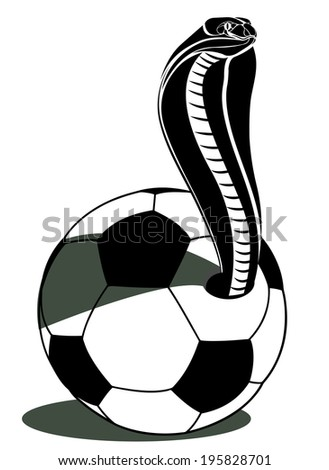 soccer football and snake vector  - stock vector