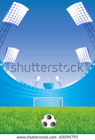 Soccer stadium with detailed grass and goal. Vector illustration.