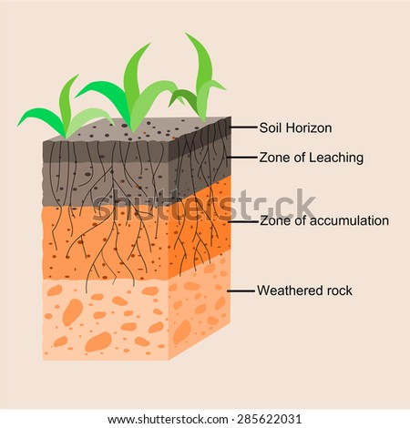 Soil layers stock images royalty free images vectors for Formation of soil diagram