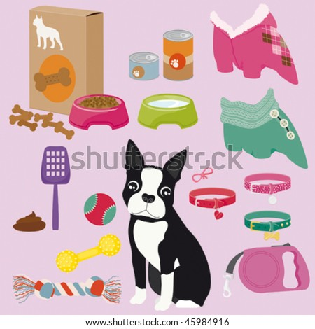 Some cute stuff for a puppy of Boston Terrier (female) - stock vector