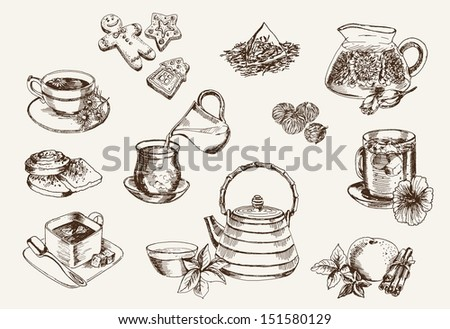 Some types of tea and the process of its preparation - stock vector