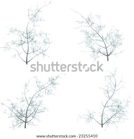 Some winter tree's - Vector --- Please see my another plants of my collection - stock vector