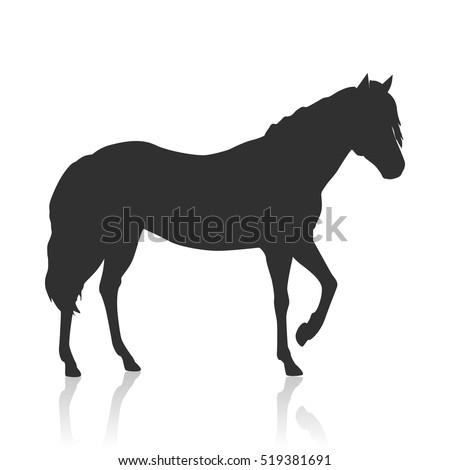 Sorrel horse black logo vector. Flat design. Domestic animal. Country inhabitants concept. For farming, animal husbandry, horse sport illustrating. Agricultural species. Isolated on white