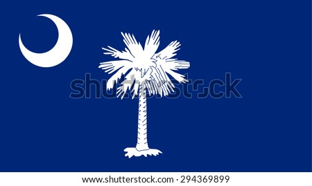 South Carolina state national flag. Vector EPS8 - stock vector