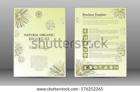 Spa Brochure Template Design Elements Ayurvedic Vector – Spa Brochure Template