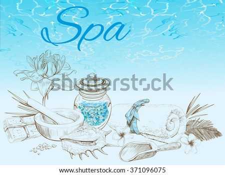 Spa treatment banner with lotus, frangipani and shell. Design for cosmetics, store,spa and beauty salon. Vector illustration - stock vector