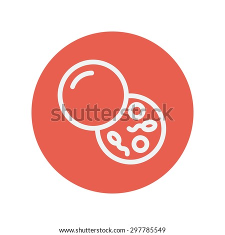 Sperm and egg cells icon thin line for web and mobile, modern minimalistic flat design. Vector dark grey icon on light grey background. - stock vector