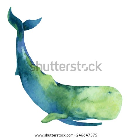 Sperm Whale. Hand drawn illustration - stock vector