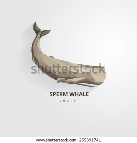 sperm whale vector illustration in modern low polygon style - stock vector
