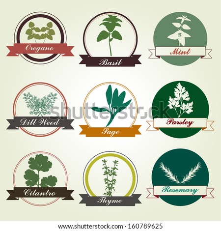 Spices And Herbs Colorful Label Set - vector eps10  - stock vector