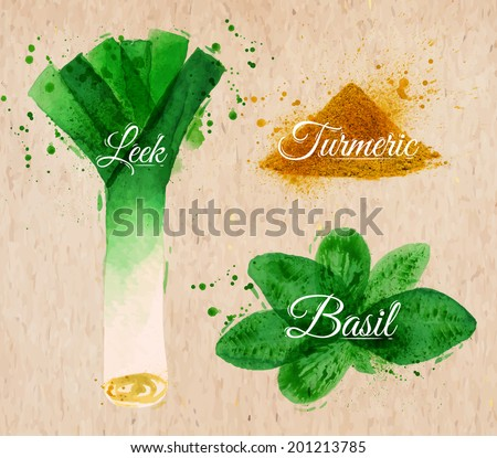 Spices herbs set drawn watercolor blots and stains with a spray leeks, basil, turmeric on kraft paper - stock vector