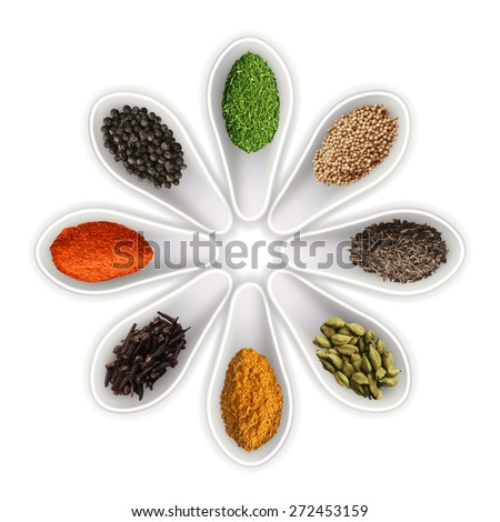 Spices in the spoons isolated on white photo-realistic vector illustration - stock vector