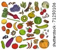 Spices&vegetables&fruits big set - stock vector
