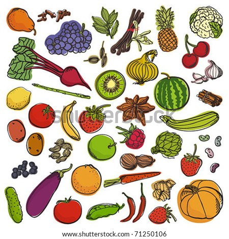 Spices&vegetables&fruits big set - stock vector