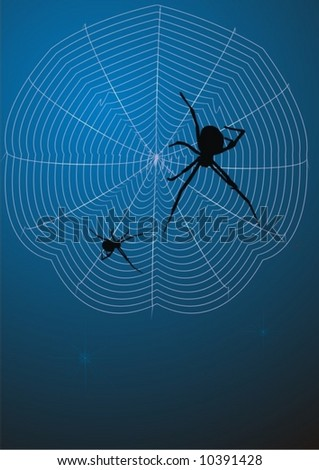 Spider on hunting - stock vector