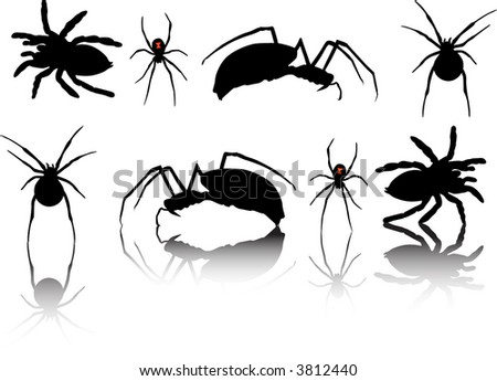 Spider Silhouettes - stock vector
