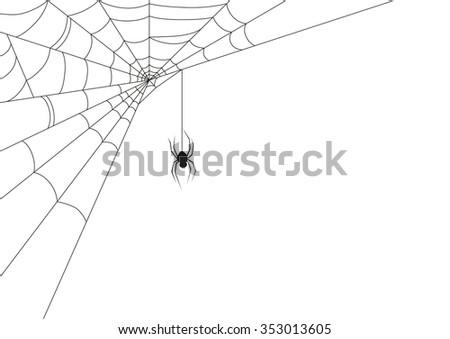 Spider web - stock vector