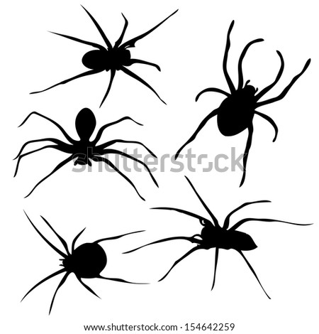 Spiders silhouette vector - stock vector