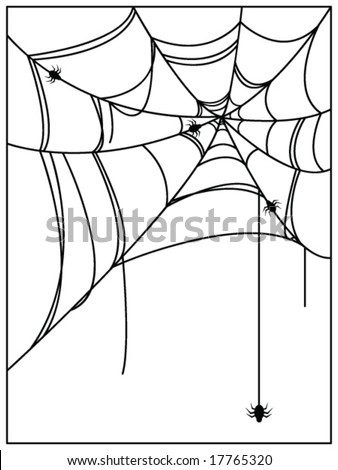 spiders web - stock vector
