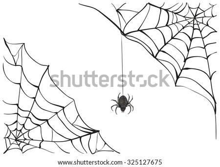 Spiderweb. Big black spider web. Black scary spider of web. Poison spider. Illustration in vector format - stock vector